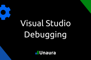 How to debug with Visual Studio in Visual Basic/C#