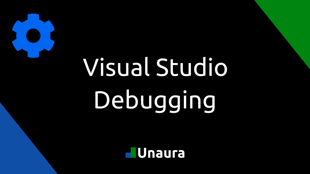 Visual Studio Debugging