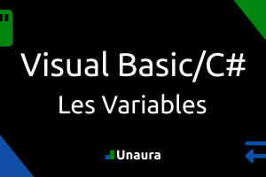 Comment fonctionnent les variables en C#/Visual Basic
