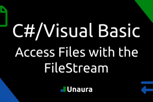 Access Files with the FileStream in C#/Visual Basic